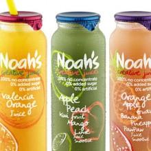 Noah's Creative Juice